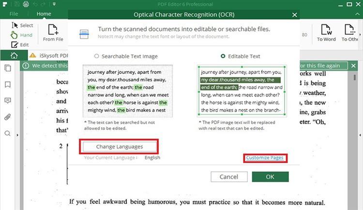 perform ocr in pdf
