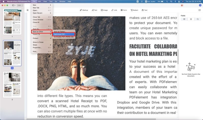 optimize pdf with pdf editor