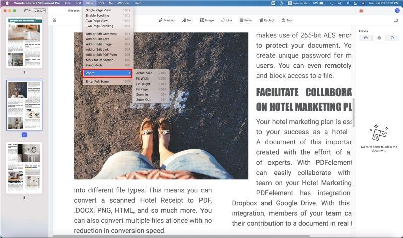 zoom pdf