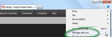 Adobe Acrobat Plug-in for Internet Explorer