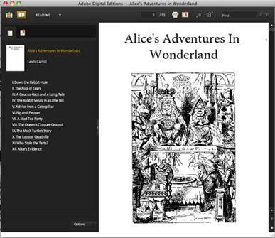 Adobe PDF Ebook Reader