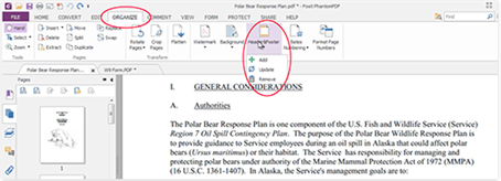 remove header and footer from pdf